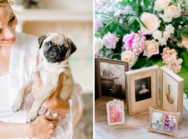 Cute wedding pug dog with his bride