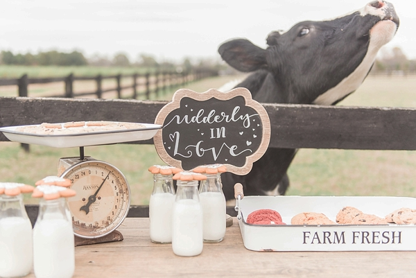Adorable cookie and milk bar with farm cows for rustic wedding