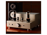 Elekit TU-8200DX Stereo Tube Amplifier Kit
