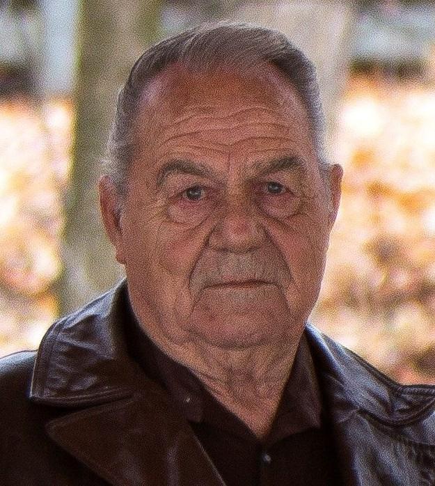 Lee Arnold Dalton