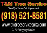 Website for T & M Tree Service