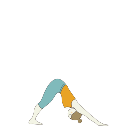 Downward Facing Dog Pose (Adho Mukha Svanasana)