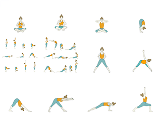 Hatha Yoga - Peak Pose Yoga Sequence: Beginner Yoga Sequence