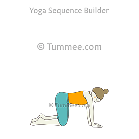 Table Top Pose (Bharmanasana)
