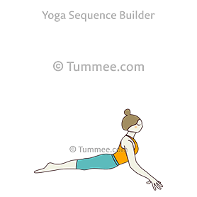 Cobra Pose Arms Spread Variation Yoga Seal
