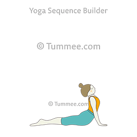 Yoga Sequence Builder For Teachers