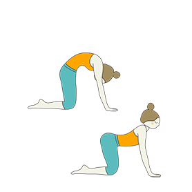 cat cow pose combined bitilasana marjaryasana
