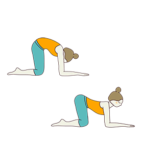 Cat Cow Pose Forearms (Bitilasana Marjaryasana Forearms)