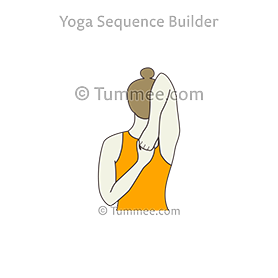 yoga poses  2100 yoga poses 90000 yoga sequences