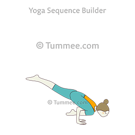 Flying Lizard Pose Yoga | Yoga Sequences, Benefits ...