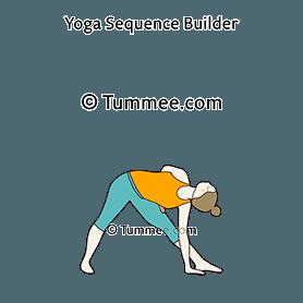 half bound triangle pose yoga ardha baddha trikonasana