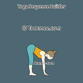 uttanasana yoga standing forward fold pose  yoga