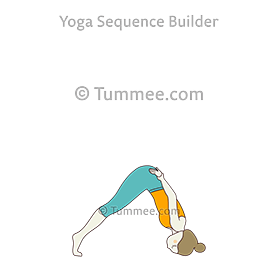sirsasana yoga headstand pose  yoga sequences benefits