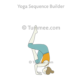 sirsasana yoga headstand pose  yoga sequences benefits