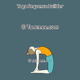 camel pose yoga ustrasana  yoga sequences benefits