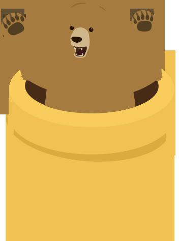 (Bear Graphic)