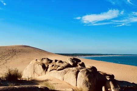 5 paseos guiados para realizar con Senderos Tours si estás de vacaciones en La Paloma