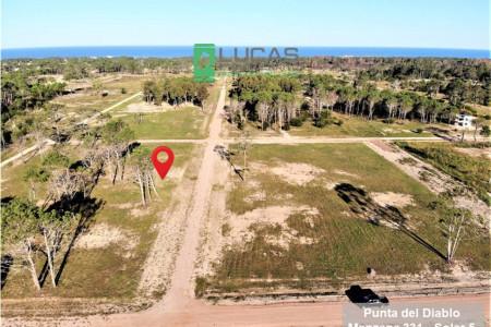 Oferte por terrenos en balnearios de Rocha desde su casa con Lucas Etcheverrito
