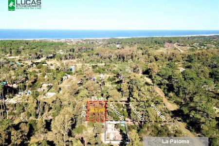 ¡Oferte online! Remate de terrenos en la costa de Rocha, en cuotas desde U$S 130 o en UI