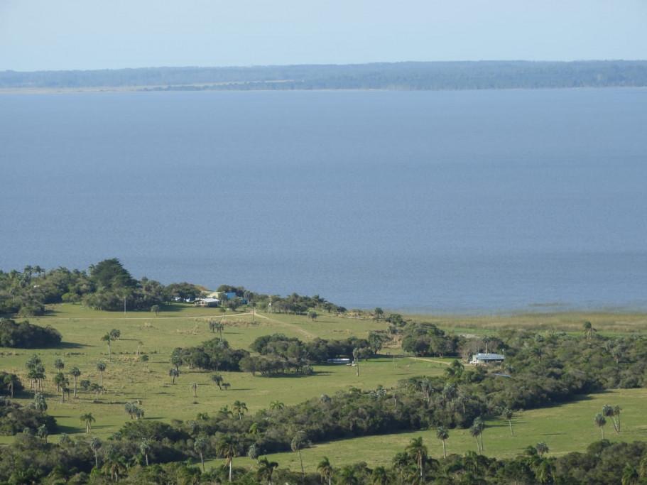 Reserva privada en la Laguna de Rocha