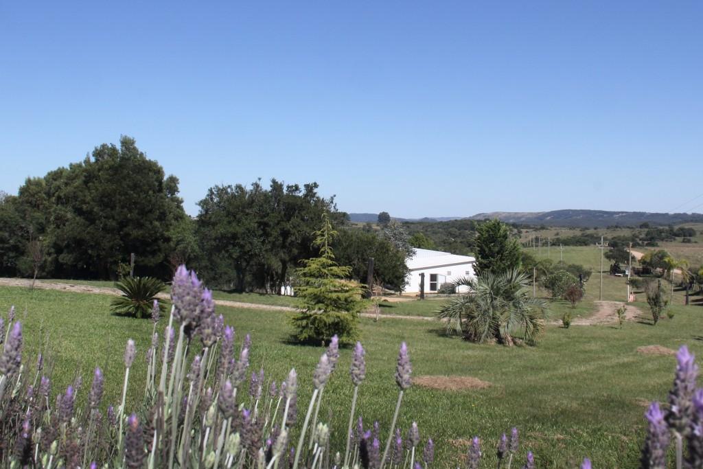 Casas de Campo en Rocha