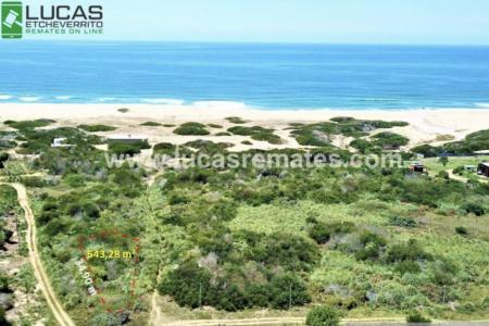 Remate online de terrenos, casa y chacra en la costa oceánica de Rocha