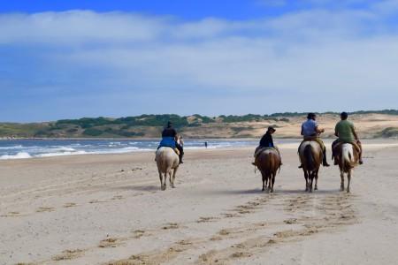 10 actividades para realizar en Semana de Turismo en Rocha