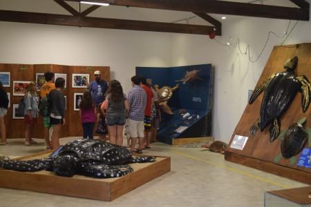 Karumbé en el Museo de La Paloma durante Semana de Turismo