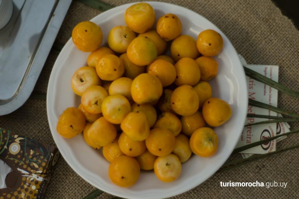 Butiá, fruto de los Palmares de Rocha