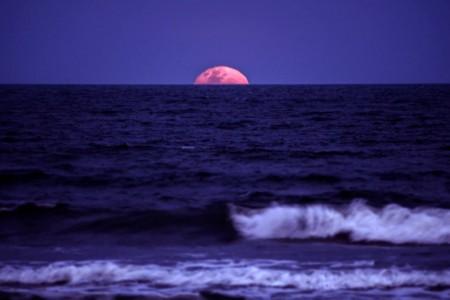 La superluna de noviembre vista desde distintos rincones de Rocha