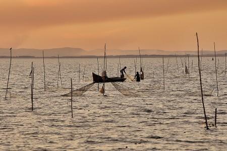 Tus fotos de la Laguna de Rocha pueden convertirse en postales. ¡Participa!