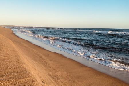 Gran remate de Carnaval: terrenos en La Paloma, Punta Rubia y Oceanía del Polonio