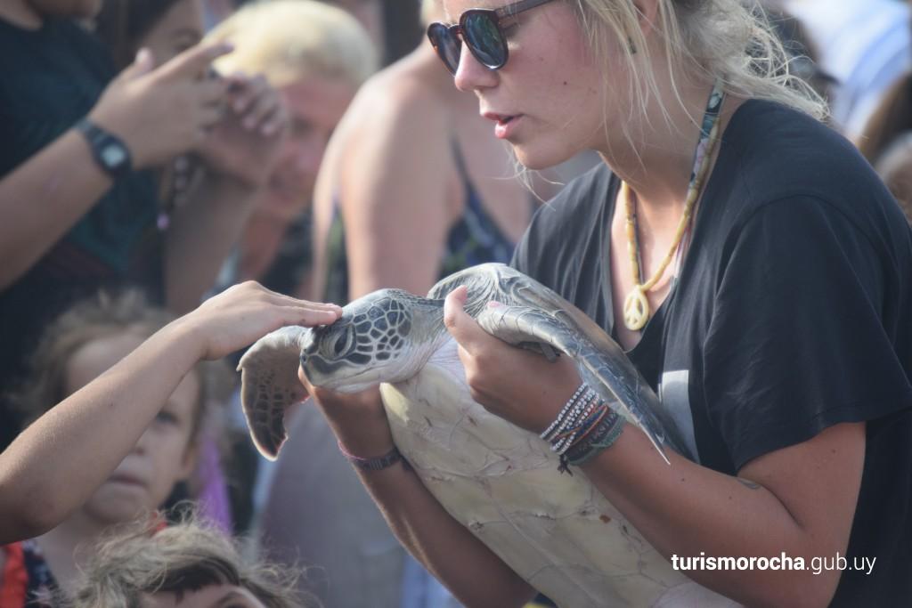 Liberación de tortugas marinas en La Coronilla