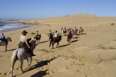 Horseback riding through beaches, lagoons, forests, dunes and streams of Rocha, to the east of Uruguay