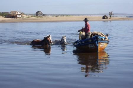 Caballos cruzando Arroyo Valizas