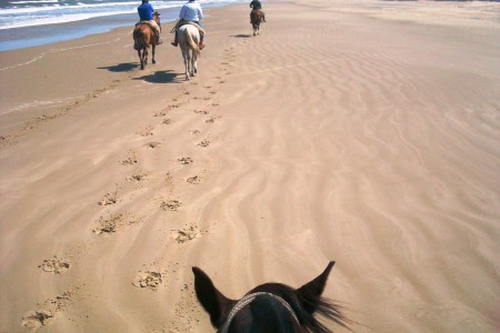 Cabalgatas por las playas de Rocha