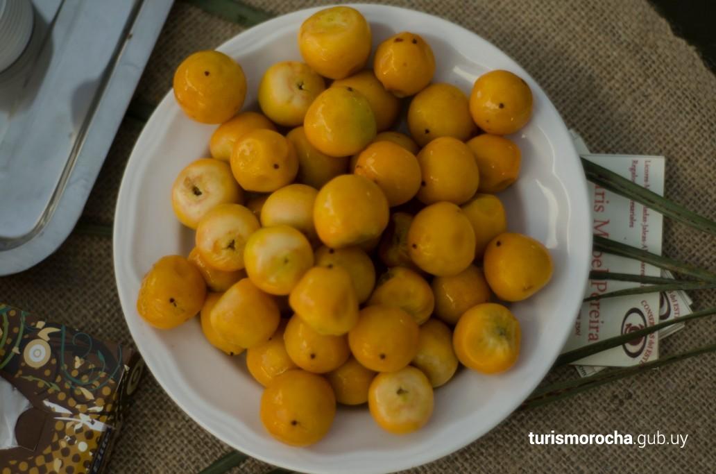 Butiá, fruto de los Palmares de Rocha, Uruguay