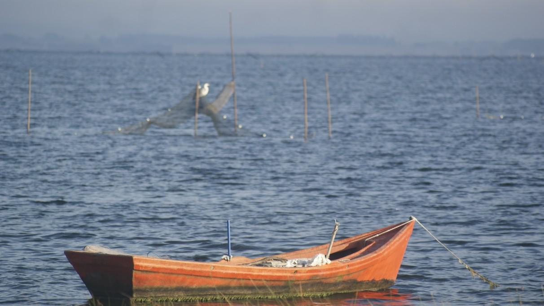 Pesca de camarón en la Laguna de Rocha