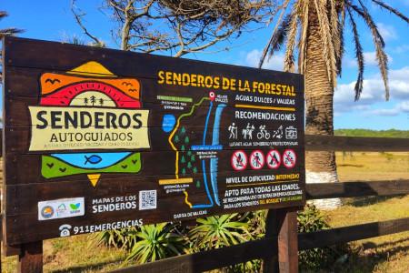 Senderos autoguiados de la Forestal, descubre bosques, lagunas y la costa oceánica entre Aguas Dulces y Barra de Valizas