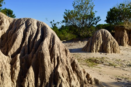 Cárcavas milenarias de Punta Rubia