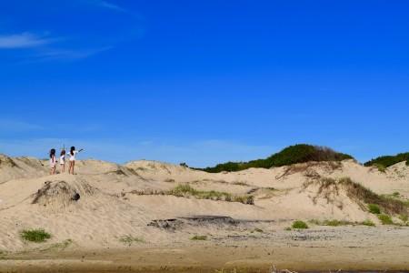 Médanos y dunas sobre la playa