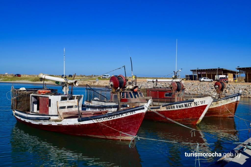 Muelle de barcas de pesca artesanal en La Paloma