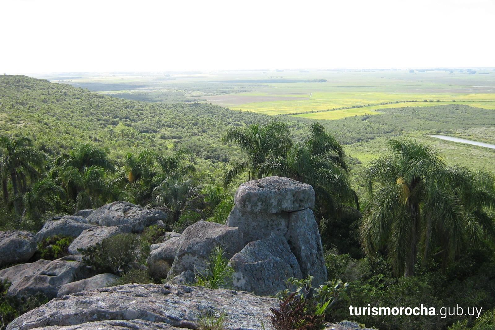 Vista desde la cima del Cerro Picudo