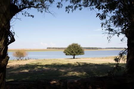 Lago de India Muerta en Velázquez