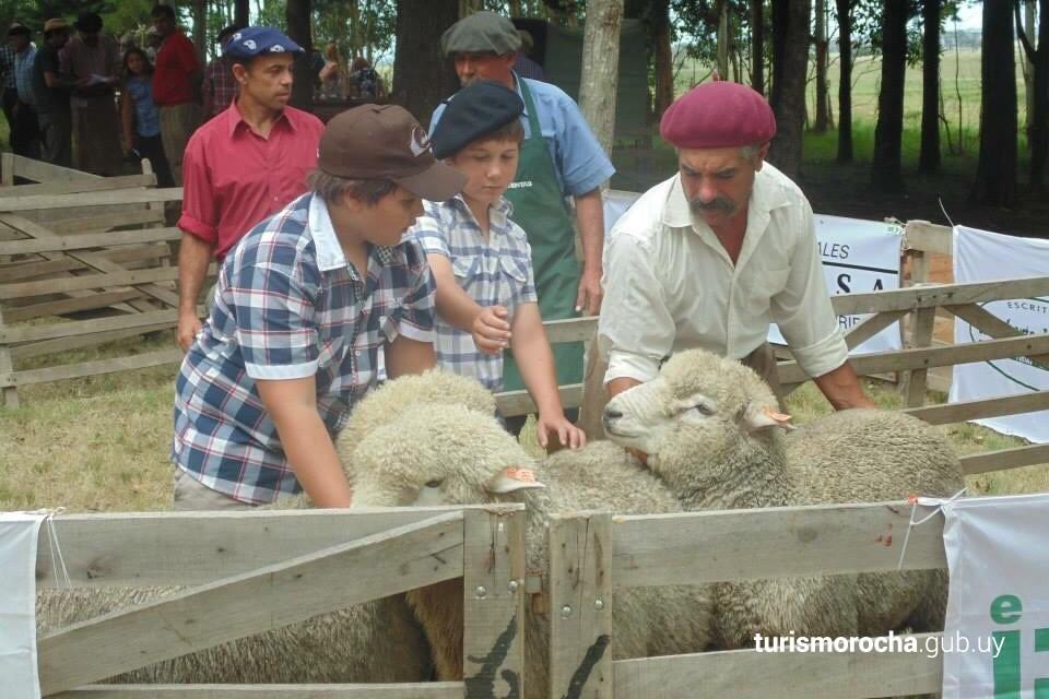 Fiesta ovina de 19 de abril
