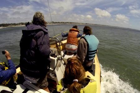 Salida de avistamiento de delfines