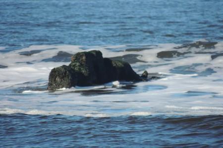 Naufragio del buque Arinos en Aguas Dulces y un cargamento de monedas de oro