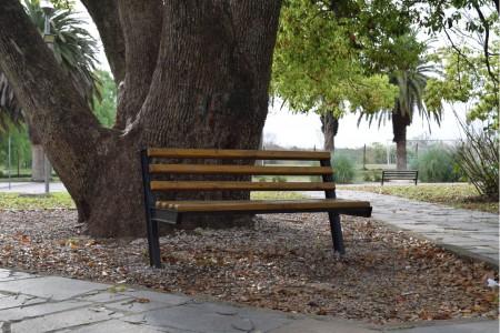 Plaza Lapeyre, Rocha