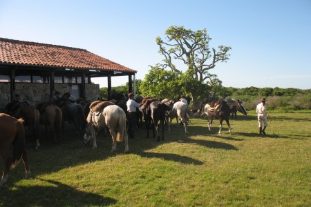 Potrerillo de Santa Teresa Biological Station: a walk through nature in Rocha, Uruguay