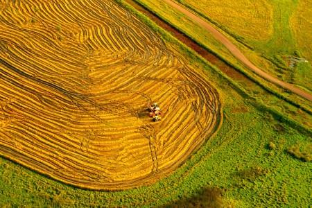 Circuito 4: Ruta del arroz